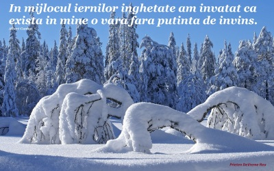 iarna-si-caldurajpg